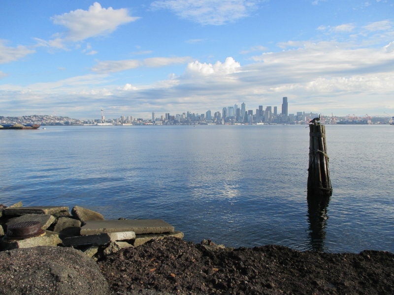 Seattle October 2014 074 (800x600)