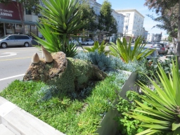Deepistan National Parklet