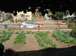Suburban Market Gardening