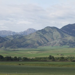 Bozeman: A Blessing and a Curse